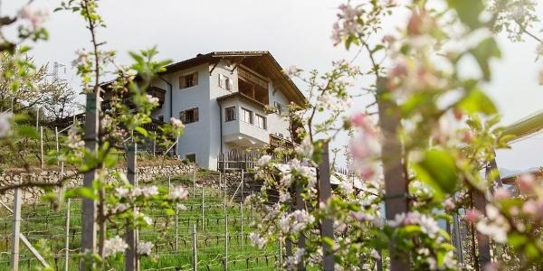 Traumhaft liegt der Sigmund Schwarzielhof oberhalb Feldthurns im Eisacktal.