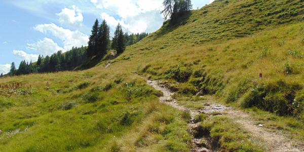 Wegverlauf zum Lichtensteinkopf