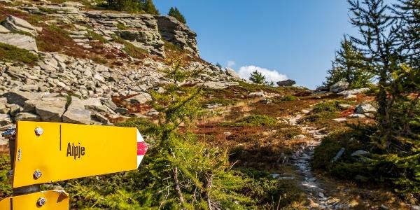 Wegweiser Richtung Alpjen