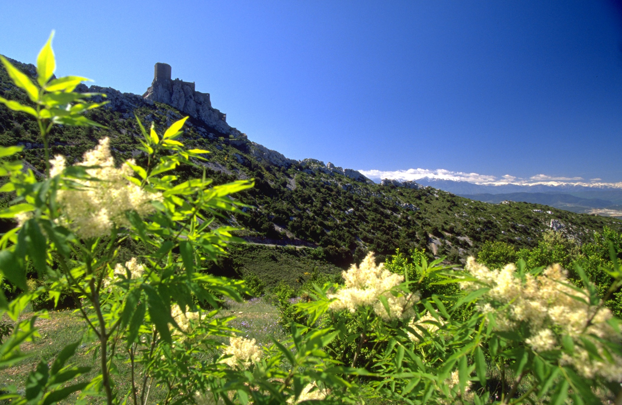The Cathar castles' route • Scenic Route » outdooractive.com