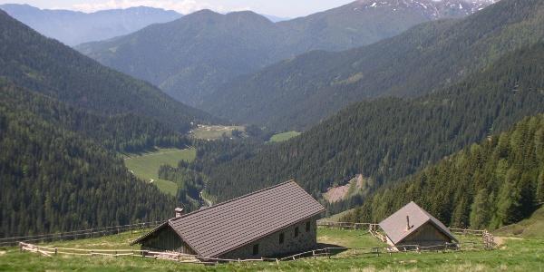 Malga Conseria e la Val Campelle