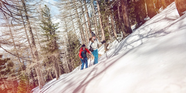Bodma winter hiking trail in Visperterminen