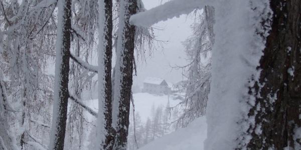 Schöne Skihänge, im Hintergrund die Dümlerhütte