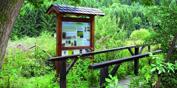 Wissen am Sahrbachweg - Feuchtwiese
