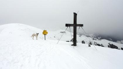 Am Gipfel angelangt ...