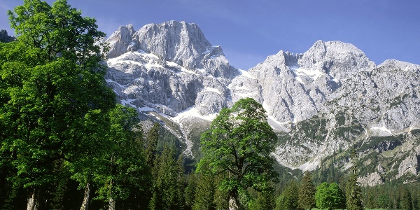Über dem Rohntalboden ragen Östliche Karwendelspitze und Vogelkarspitze auf.