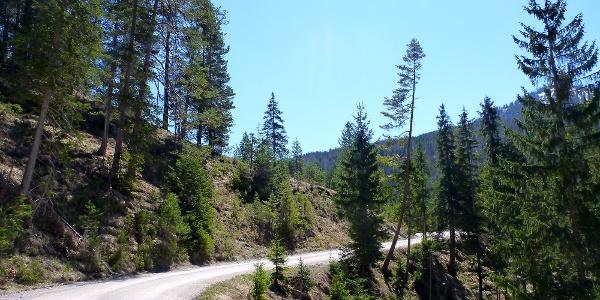 Schotterweg kurz vor der Gleirscherhöhe