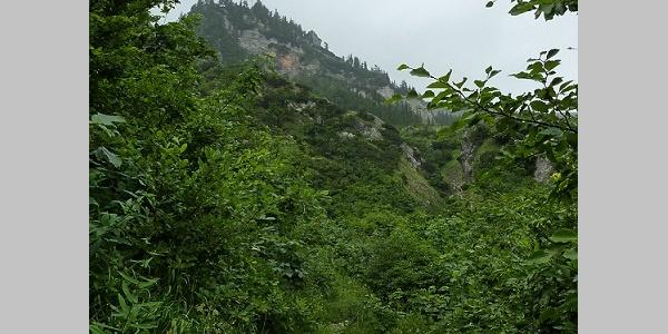 Aufstieg über Lohmgraben