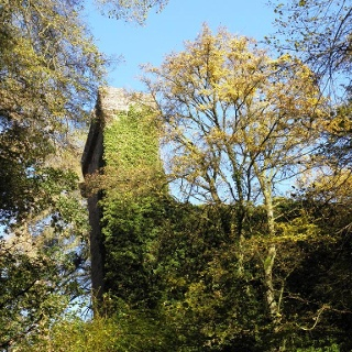 Burg Stolzeneck Turm