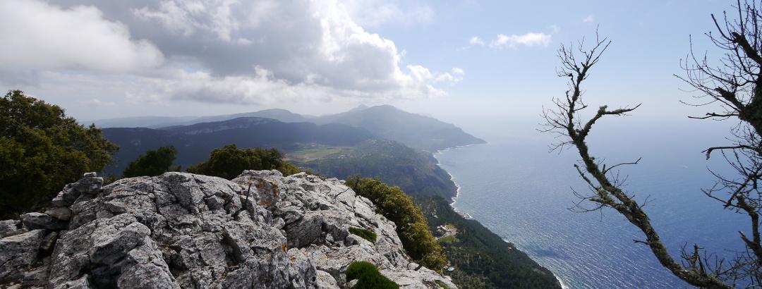 In den Bergen über Valldemossa