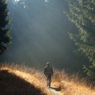 Dem Licht entgegen - Nachtwanderung auf dem Sintfeld-Höhenweg 2013