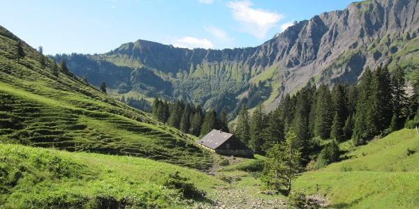 Weg zur Schönenwaldalpe im einsamen Mellental