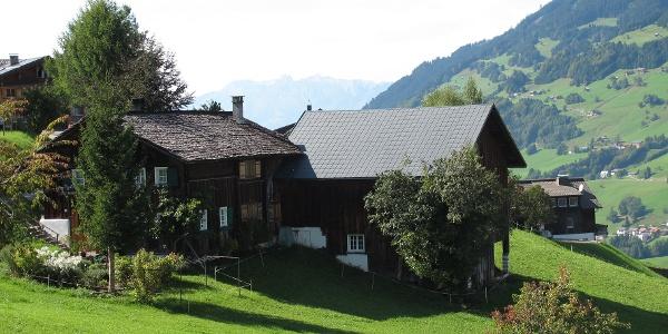 Walserhaus in Raggal
