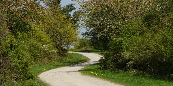 Wegverlauf bei Simmozheim