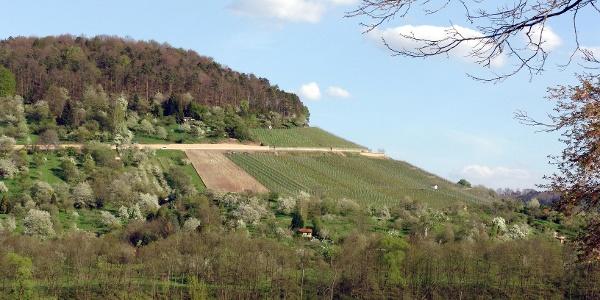 Aussicht Breuningsweiler