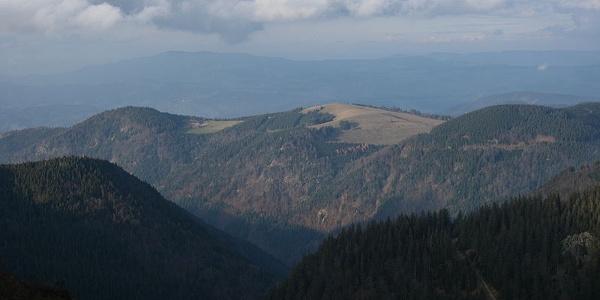 Blick auf den Hinterwaldkopf