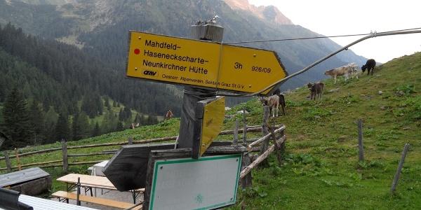 Der Wegweiser bei der Winkleralm gibt die Richtung vor.