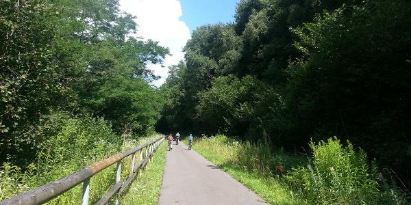 Auf dem Ruwer-Hochwald-Radweg