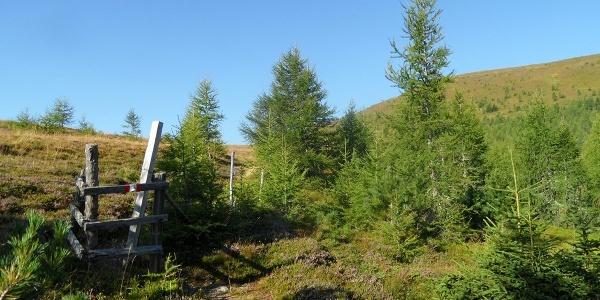 Holzzaun unterhalb der Haidnerhöhe