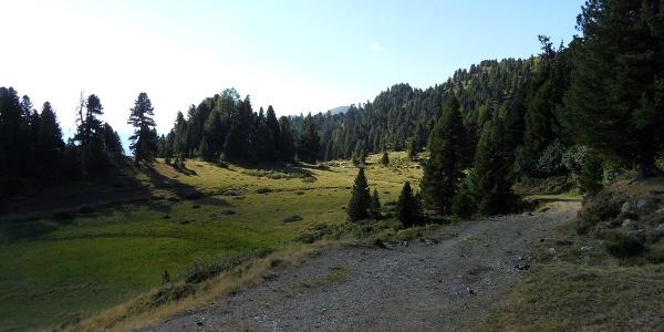 Wegweiser zur Priesshütte bzw. zum Gr. Königstuhl