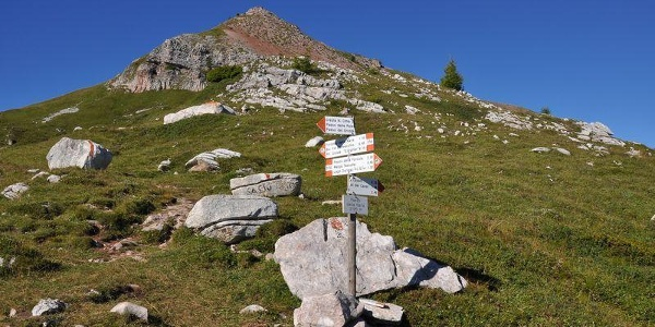 Malga Tassullo - Bivacco Costanzi -  Passo Prà Castron