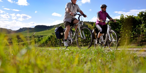 Radfahren am Württemberger Weinradweg