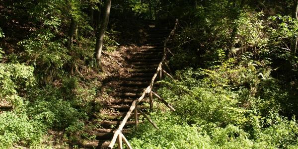 Treppe ins Einsturzloch am Bergbaurundweg