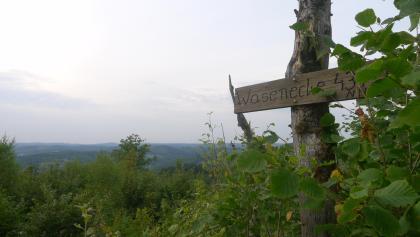 Panoramapunkt Wasnecke, 437m hoch! Hier beginnt der Trail......