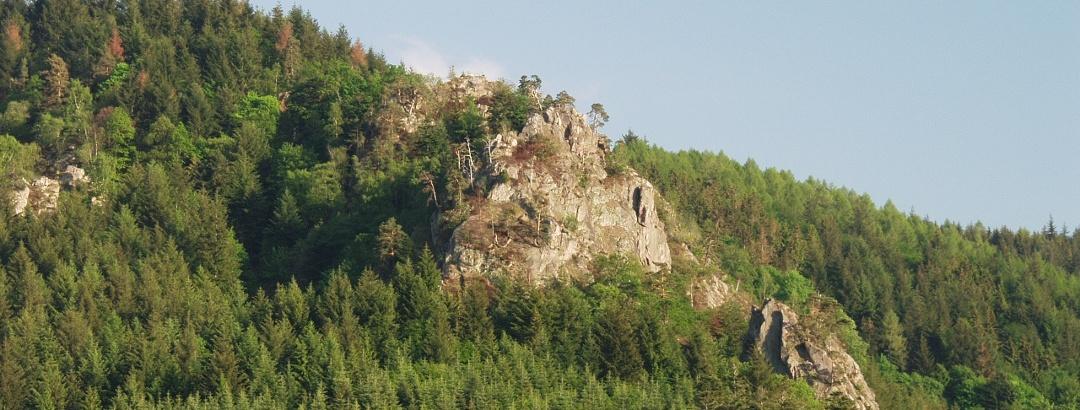 Lautenfelsen bei Gernsbach