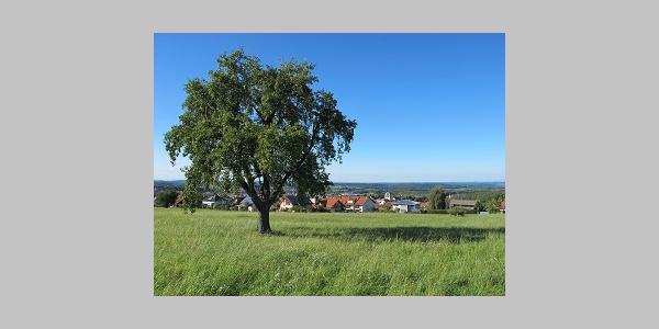 Ausblicke Straubenhardt