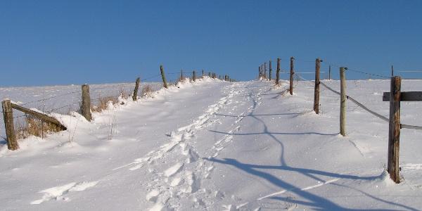 Auf der winterlichen Iserbachschleife gen Himmel