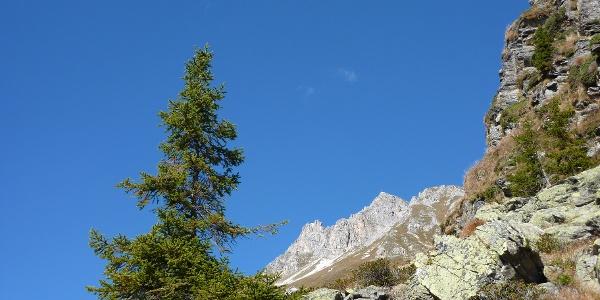 Am Ridnauner Höhenweg