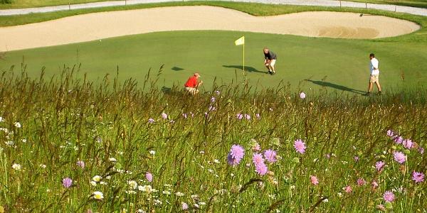 Golfplatz Almenland