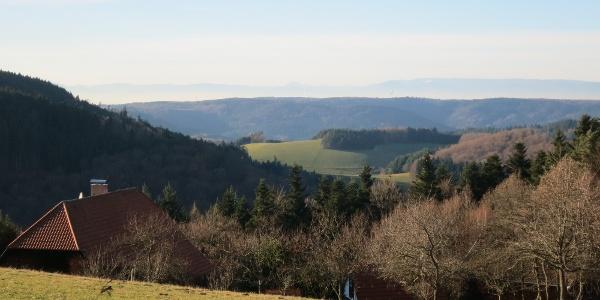 Panorama Hofstetten