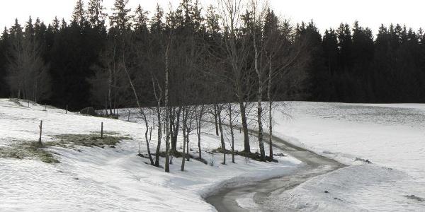 Winterlandschaft bei St. Georgen