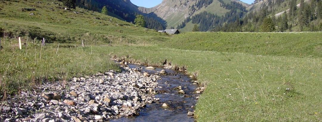 Das Justistal mit dem Grönbach und freiem Blick zum Sichlepass und zur Schibe im Talschluss.