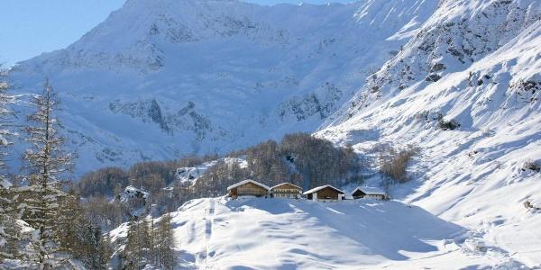 Blick von Pfelders nach Zeppichl, hinten die Hohe Wilde (3.480 m)