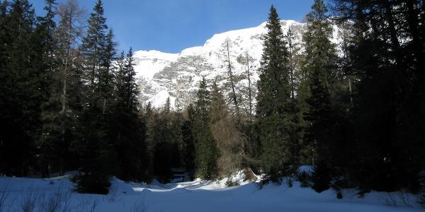 Und dann wieder über kleine Waldschneisen. Varianten gibt es genügend.