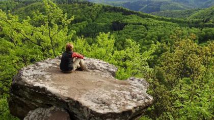 Drachenfels, Aussicht vom Südfels