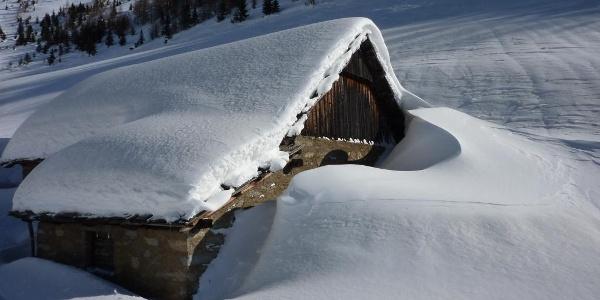 Schnee hat's genug