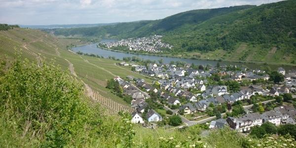 Blick von der Domgartenhütte auf Winningen