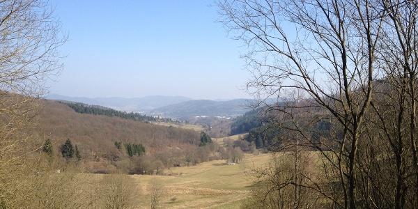 Aussicht in Gladenbachtal