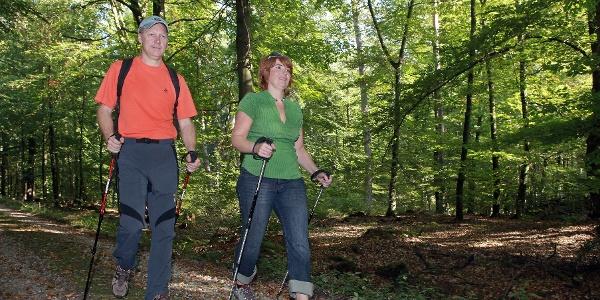 Nordic Walking im Bienwald