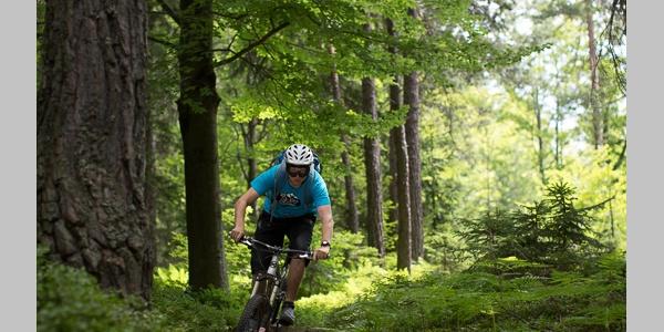 Singel Trail Jamnica 3