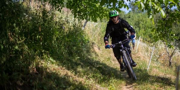 Trail SLO (Kugi)