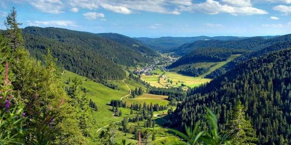 Blick ins Menzenschwander Tal