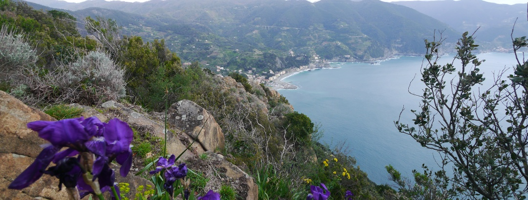 View of Monterosso and Cinque Terre